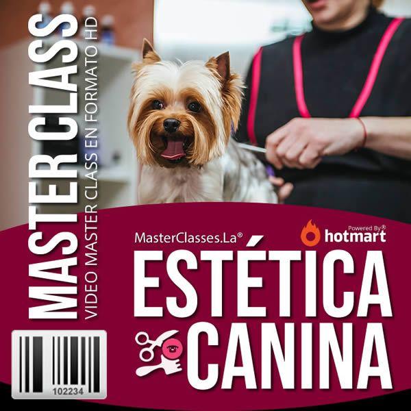 Curso Estética Canina