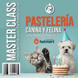 Curso Pastelería Canina y Felina