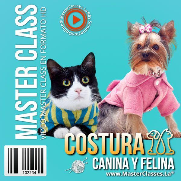 Curso Costura Canina y Felina