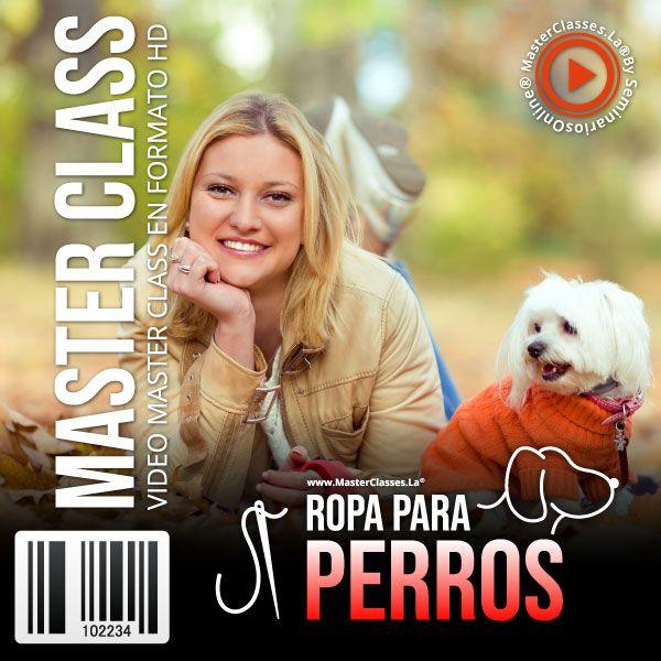 Curso Ropa Para Perros