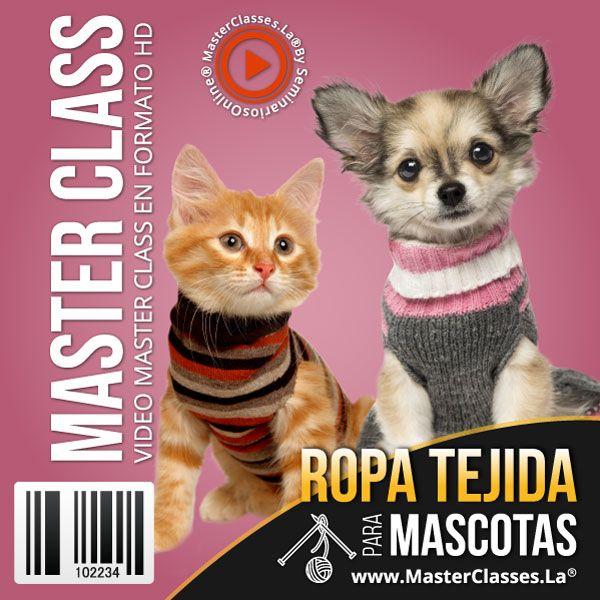 Curso Ropa Tejida para Mascotas