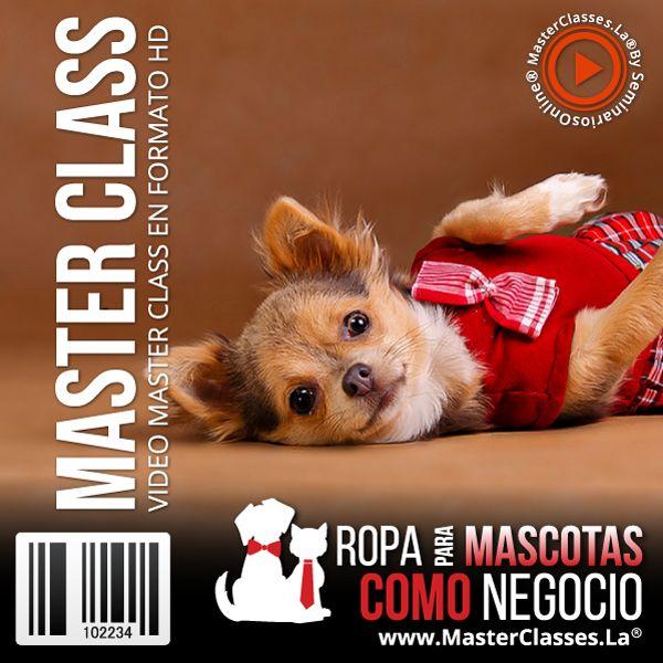 Curso Ropa para Mascotas como Negocio