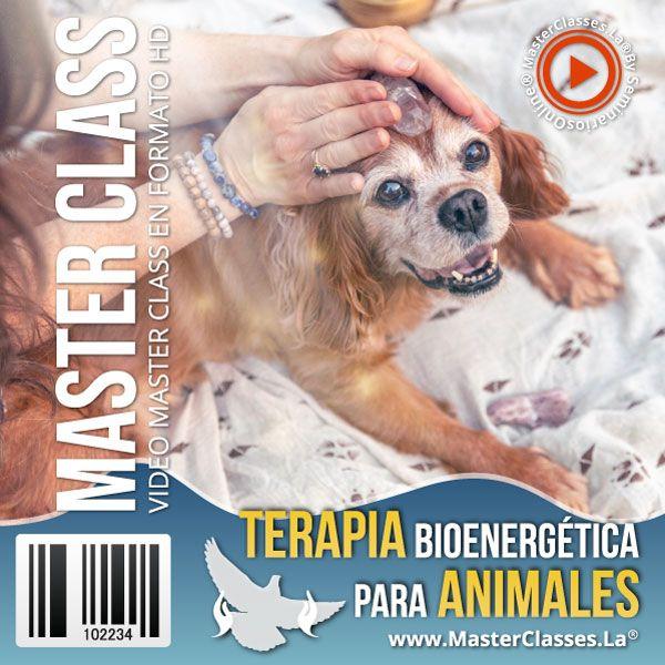 Terapia Bioenergética para Animales